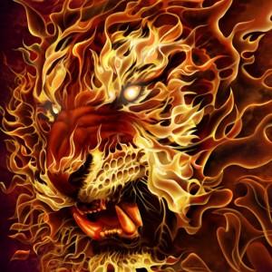 tigert fire